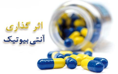 اثر گذاری آنتی بیوتیک